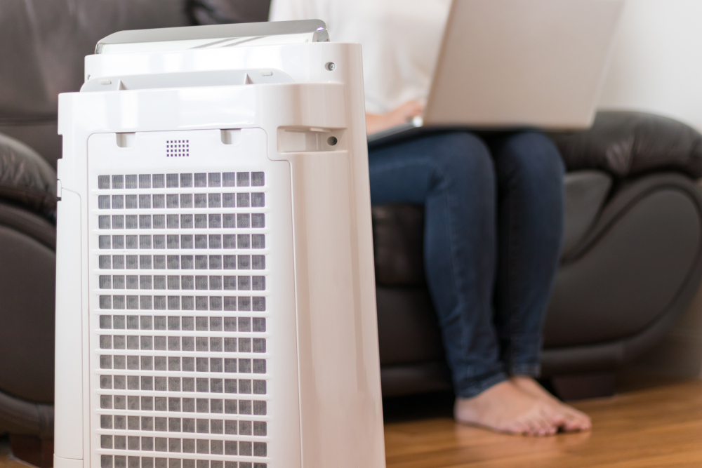 get rid of mold with an air purifier