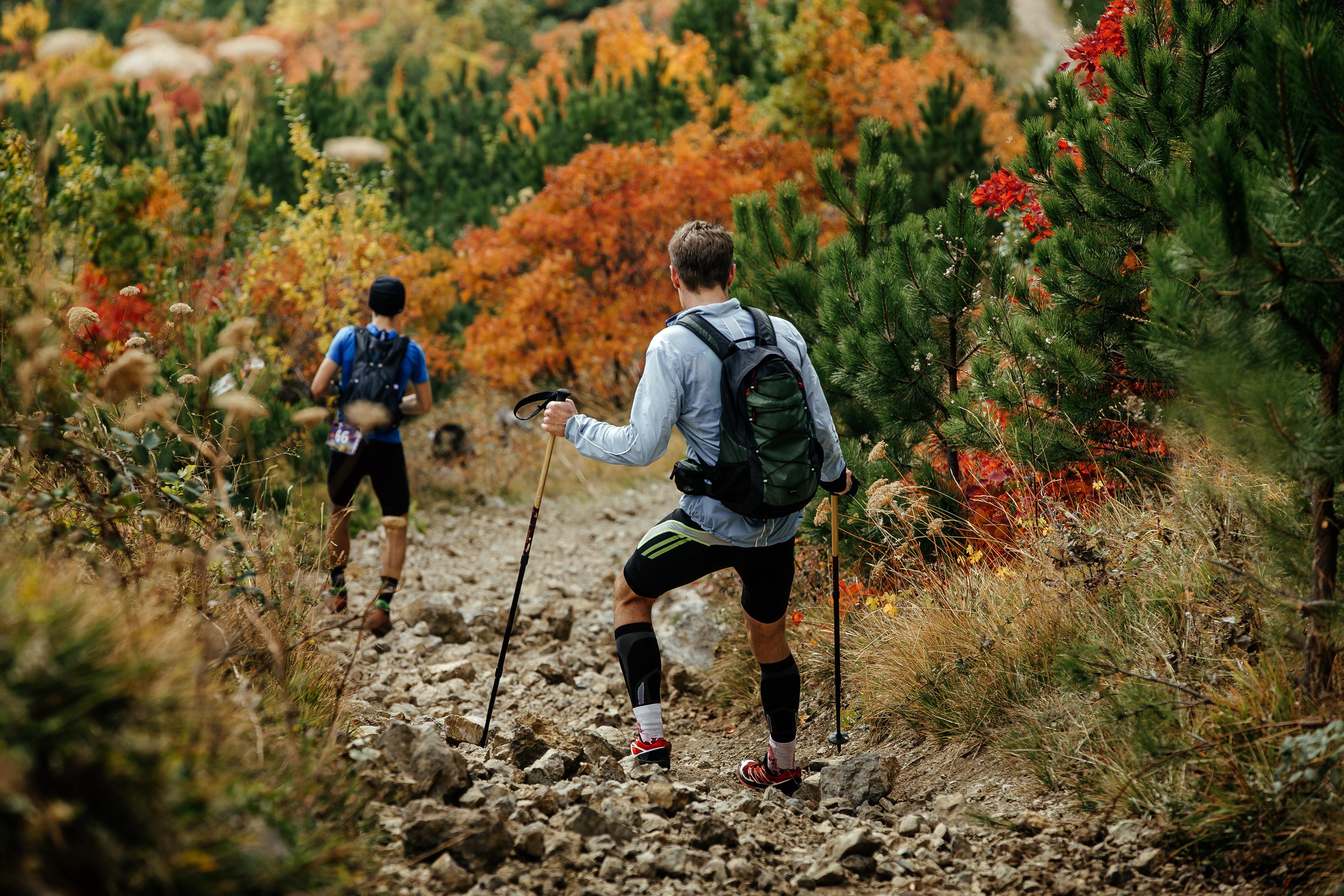 compression sock hikers