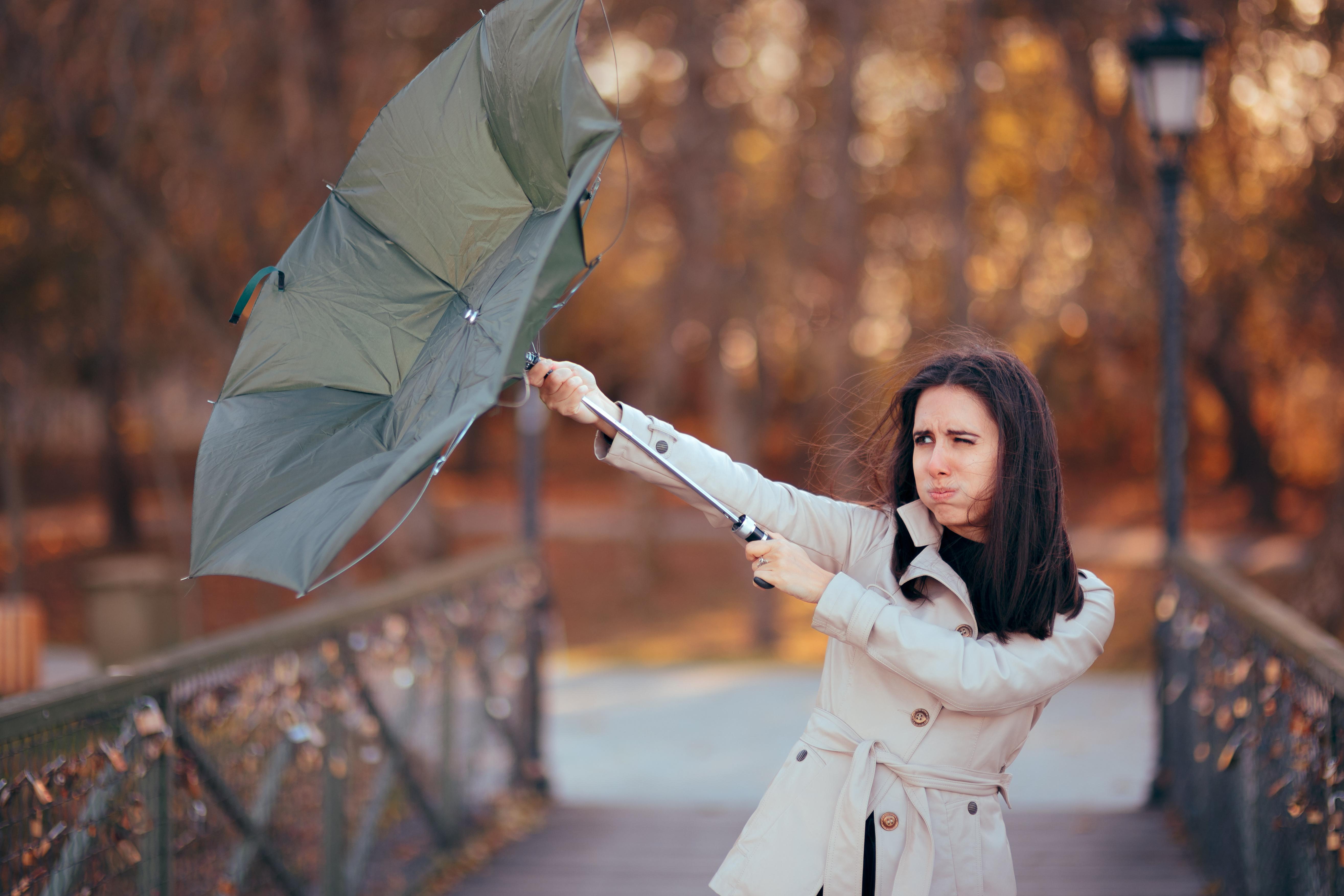 durable umbrella
