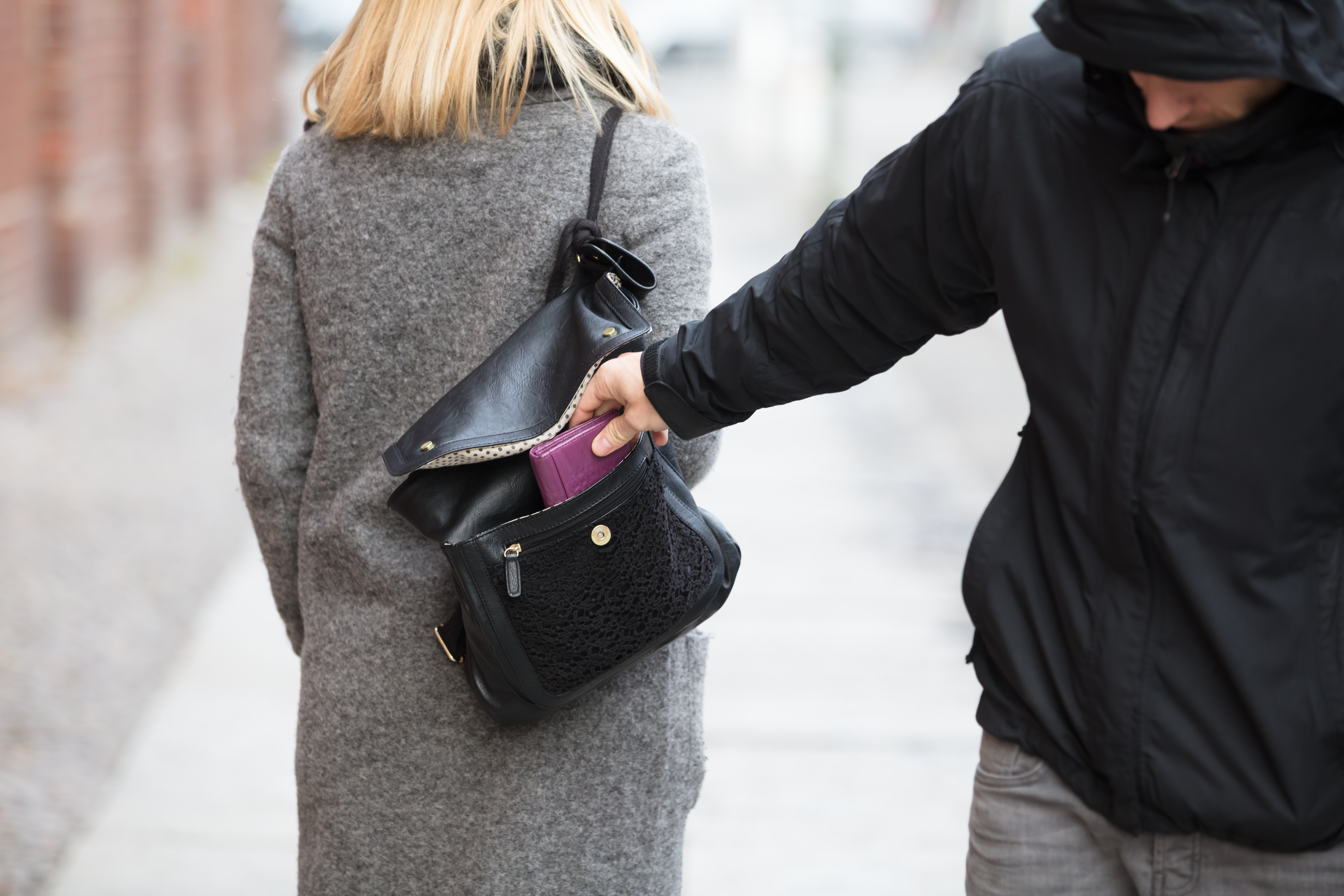 pickpocket; best travel purses for security