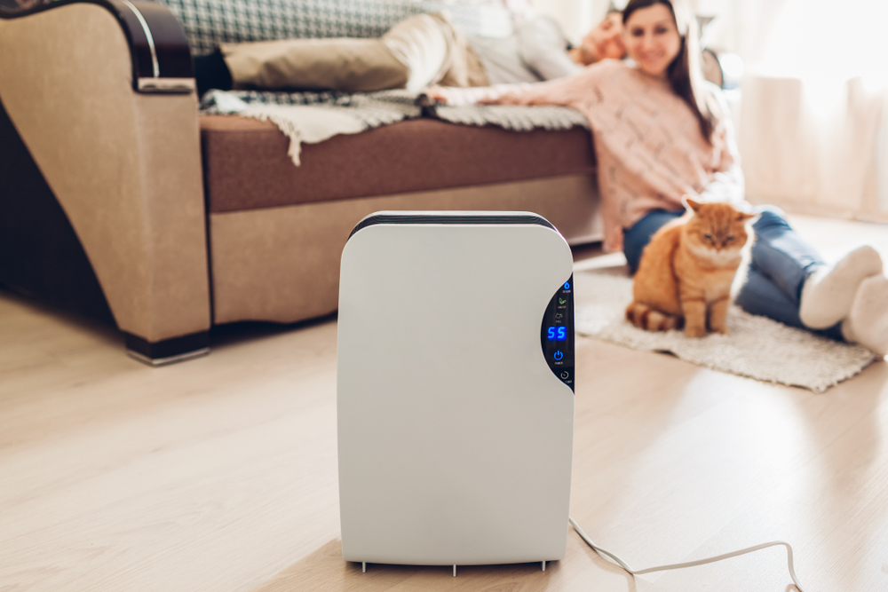 Top 5 Signs You Need a Dehumidifier at Home