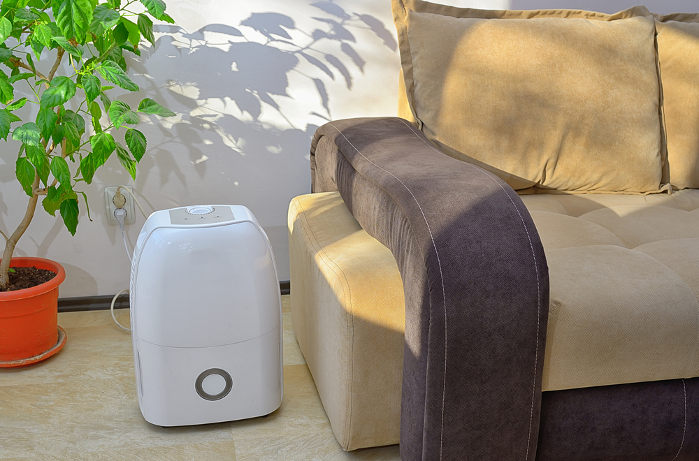 small dehumidifier in living room
