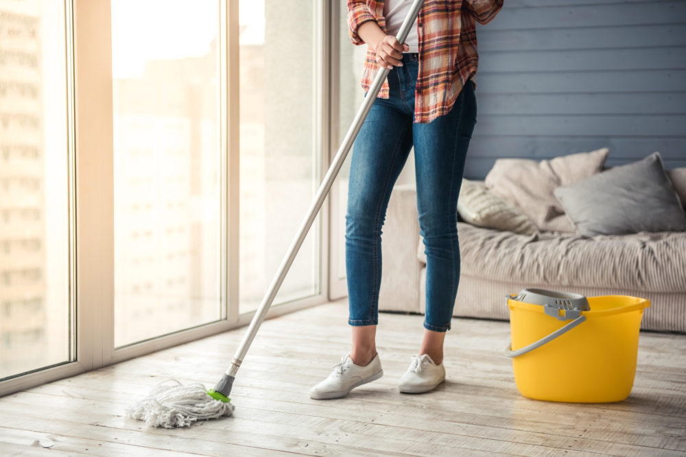 The 5 Best Steam Mops To Buy In 2019 Top5