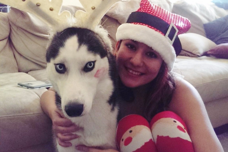 husky's owner takes to social media