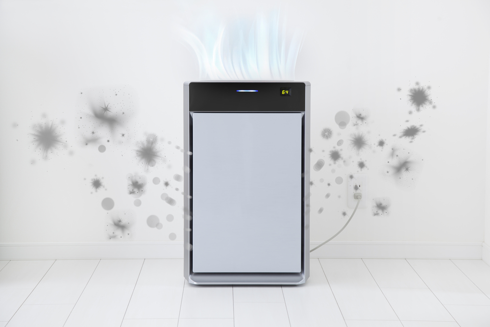 air purifier vs dehumidifier with moldy wall