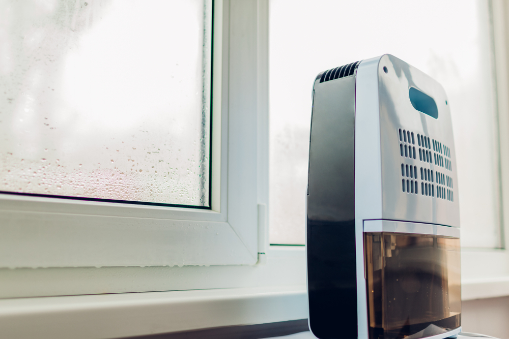 dehumidifier near window