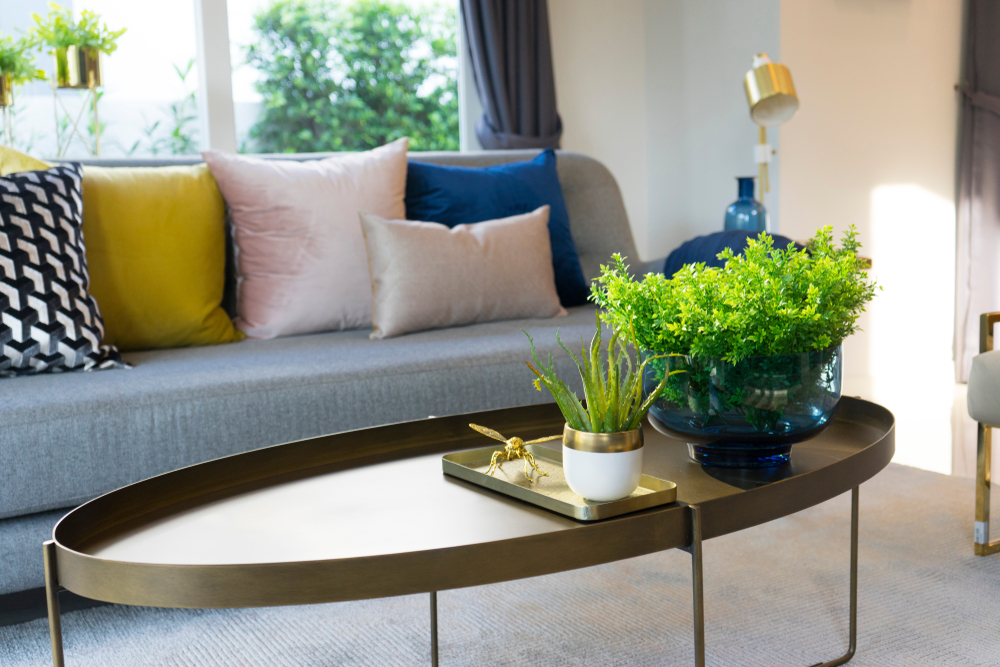 home with plants and clean air
