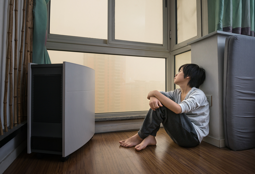 kid and air purifier
