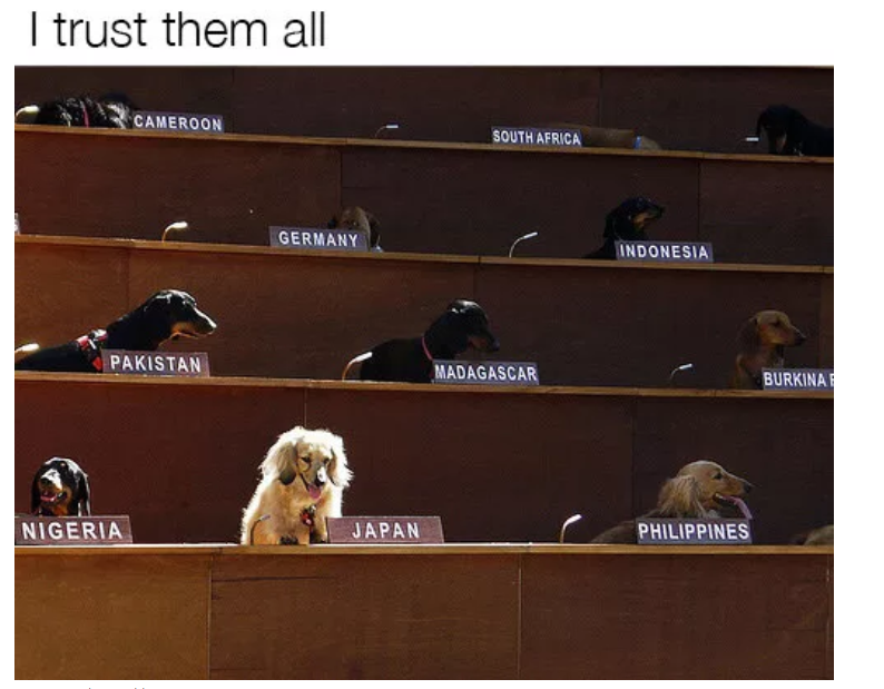 delegation of dogs meme