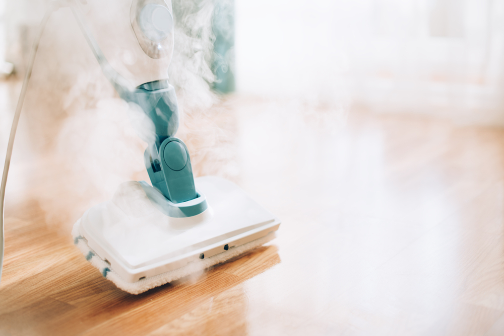 green steam cleaner