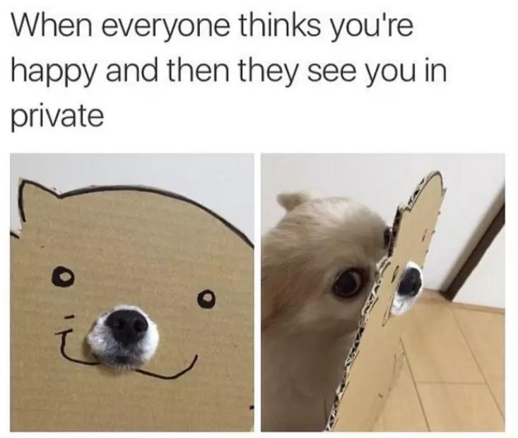 happy sad funny memes
