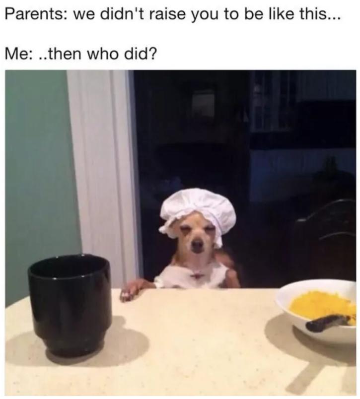parents funny memes