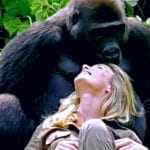 Man Introduces Wife To Gorilla, Then Camera Captures More Than Expected