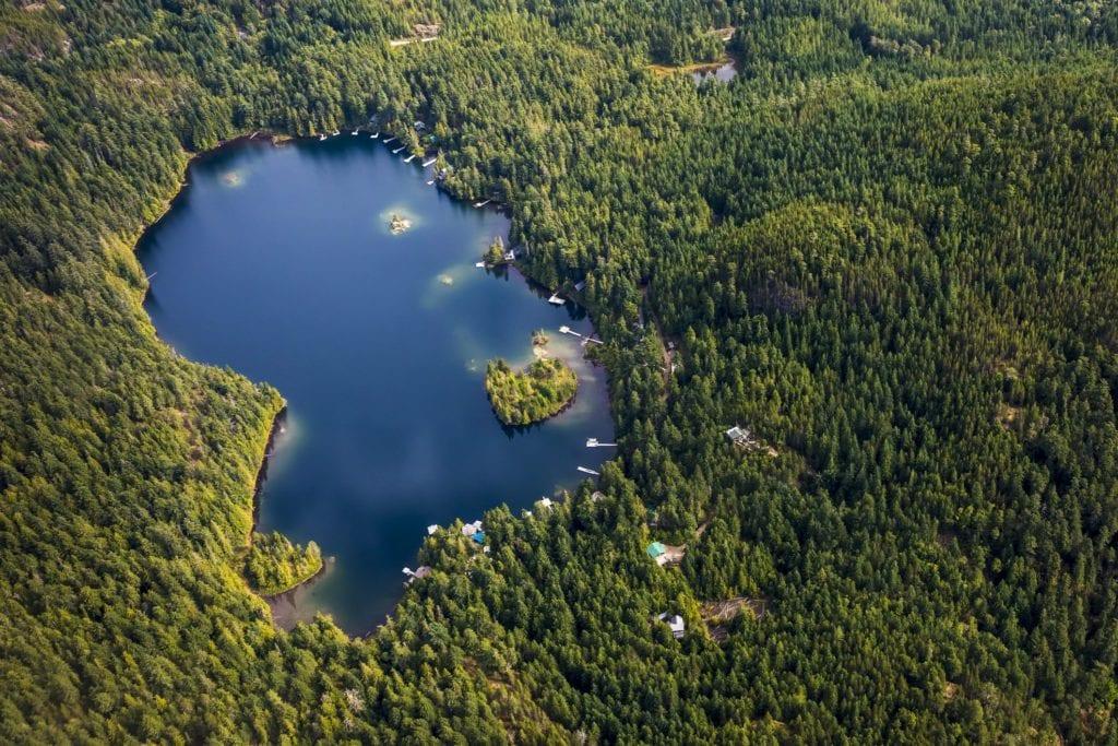 Boy Finds Car In Lake, Acts Fast When He Peeks Inside