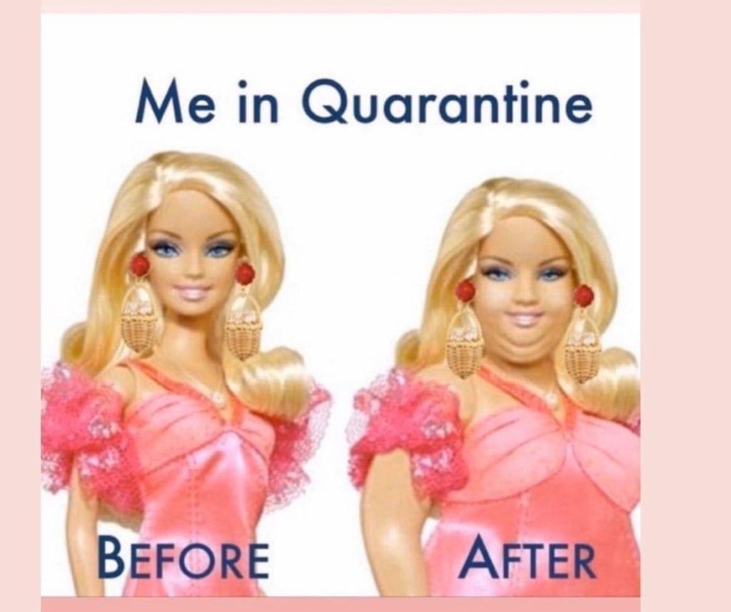 fat quarantine meme