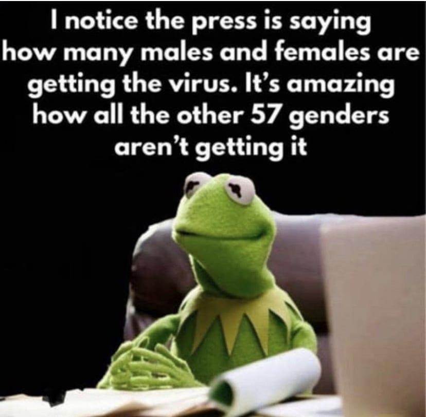 57 genders Quarantine Meme