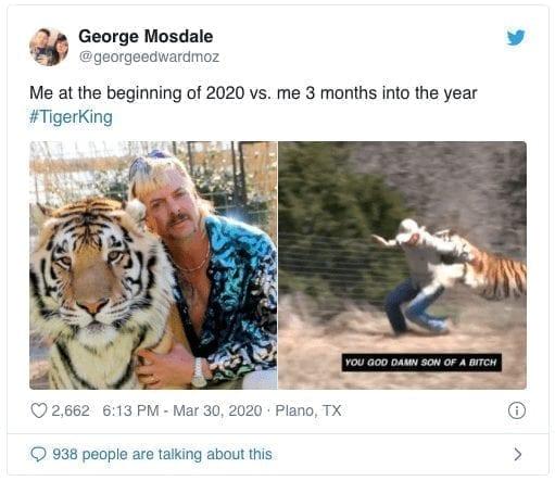 Tiger Hope Quarantine Meme