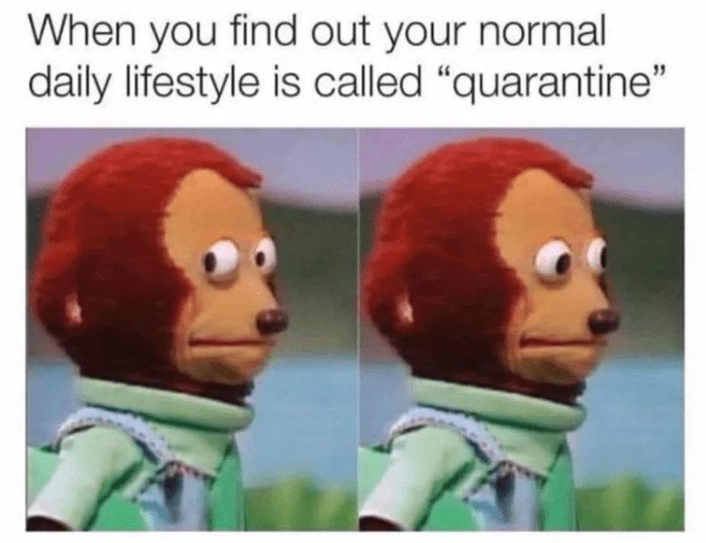 my life Quarantine Meme
