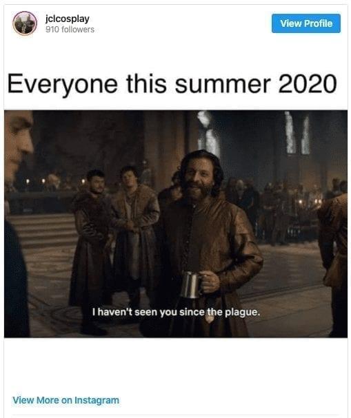 Summer 2020 Quarantine Meme