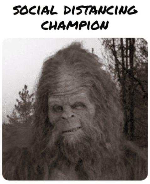 The Champion Quarantine Meme