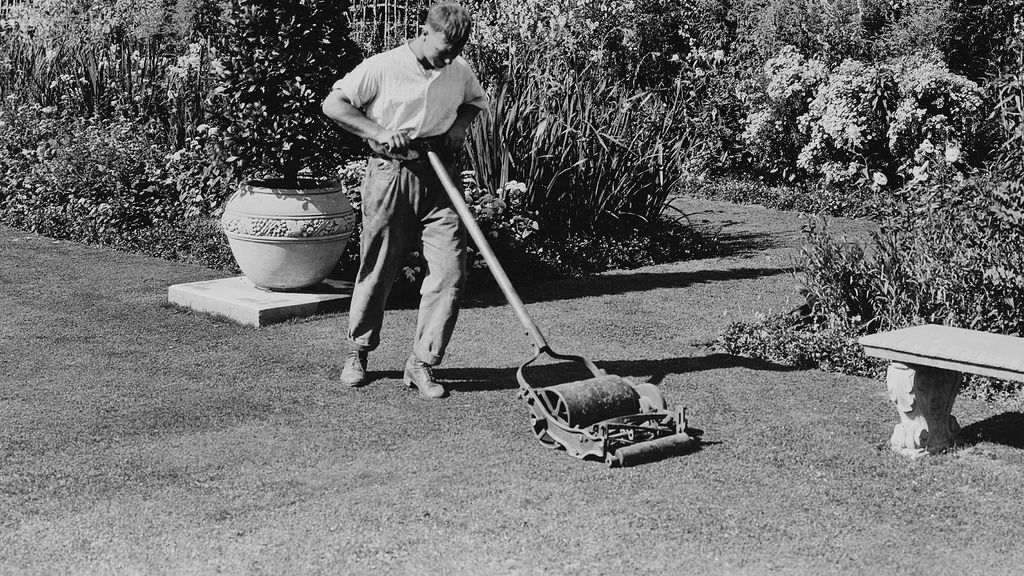 Which item was used to cut the grass in your front lawn?