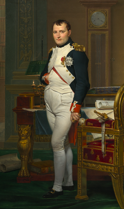 Napoleon  Bonaparte was once attacked by thousands of what?