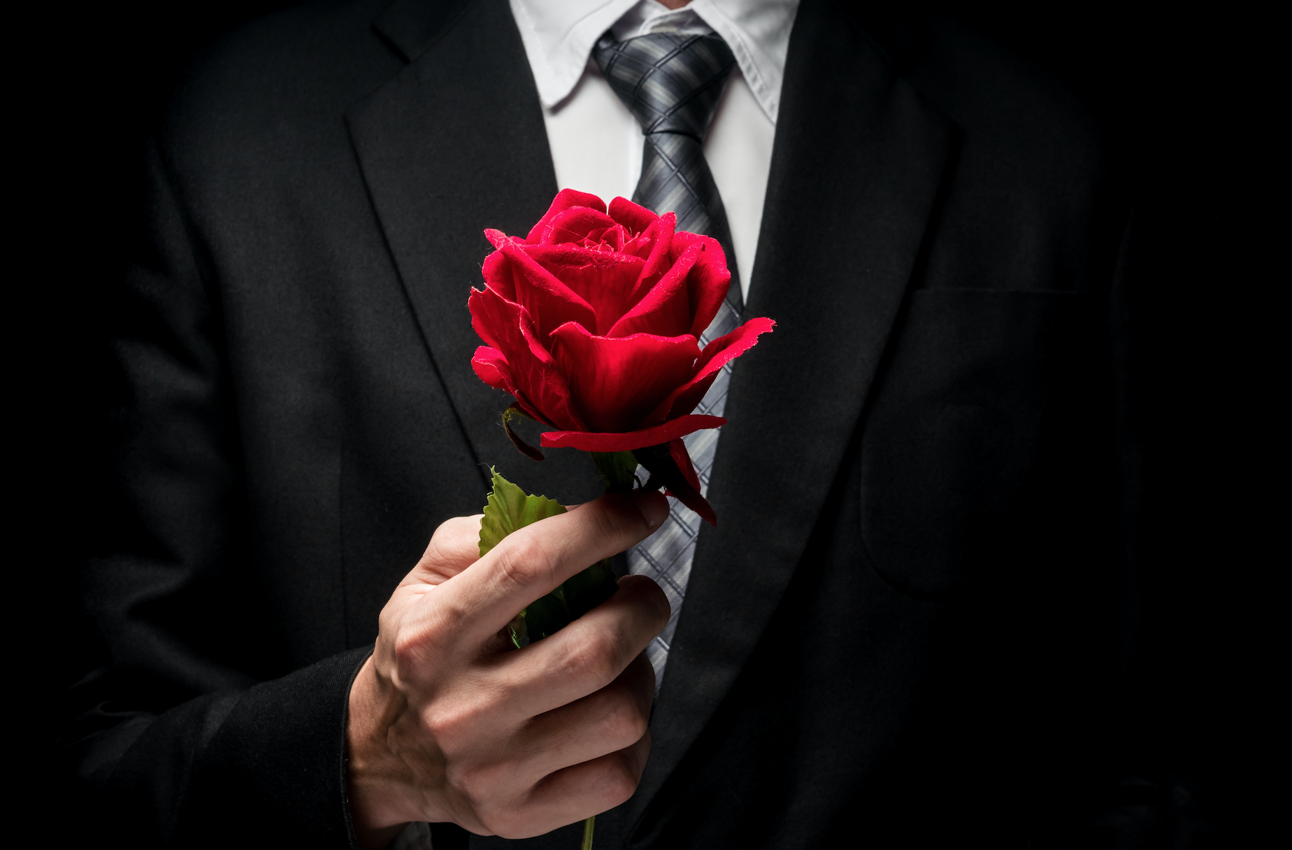 Everything that you want to know about the, The Bachelor