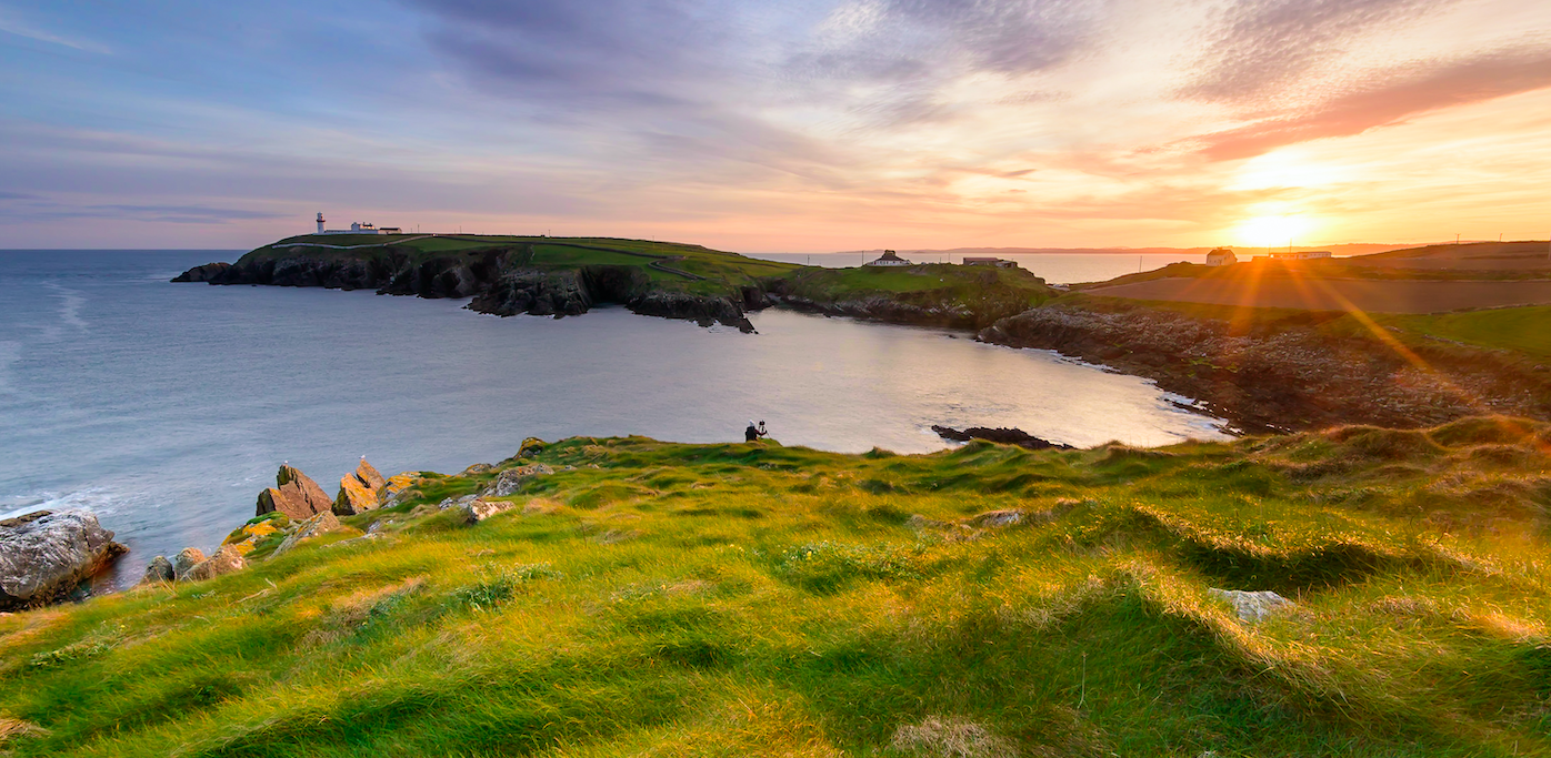 What did Saint Patrick supposedly drive out of Ireland?