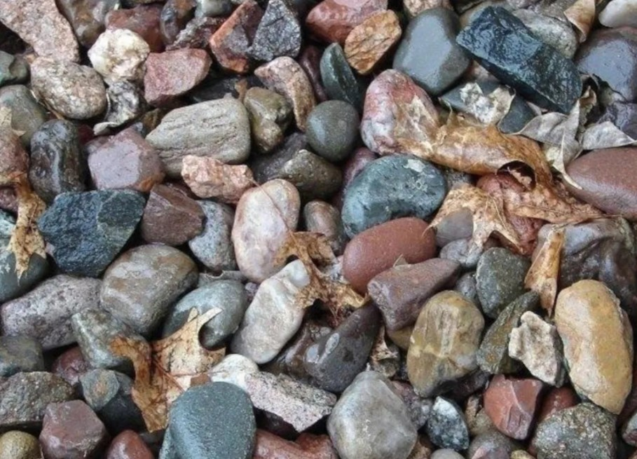 Only rocks and leaves?