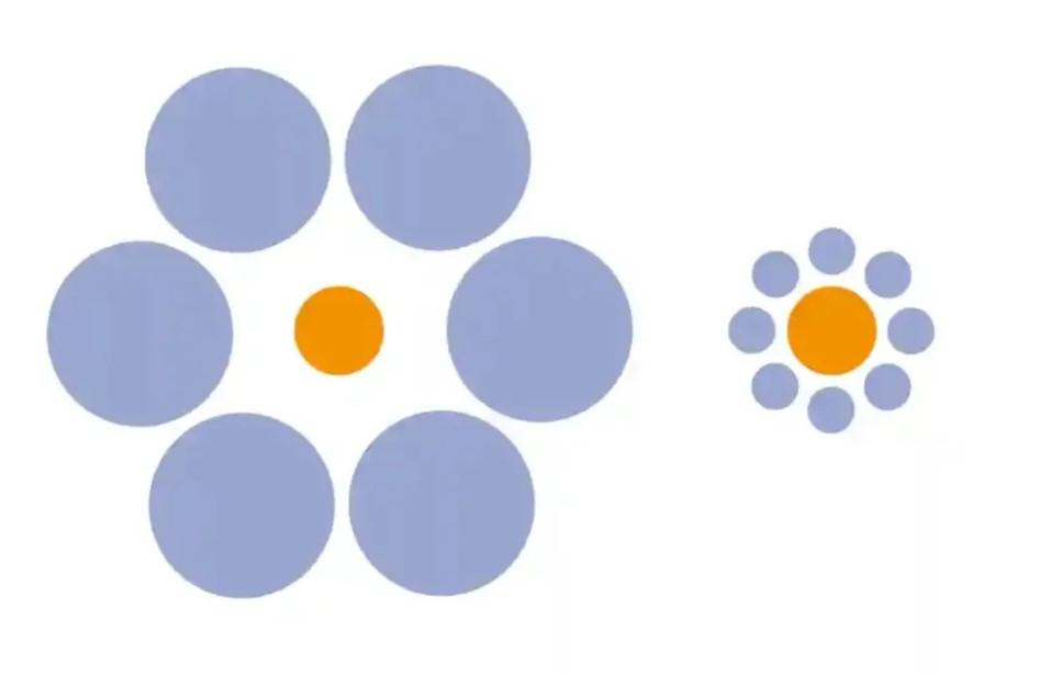 Which orange circle is bigger?