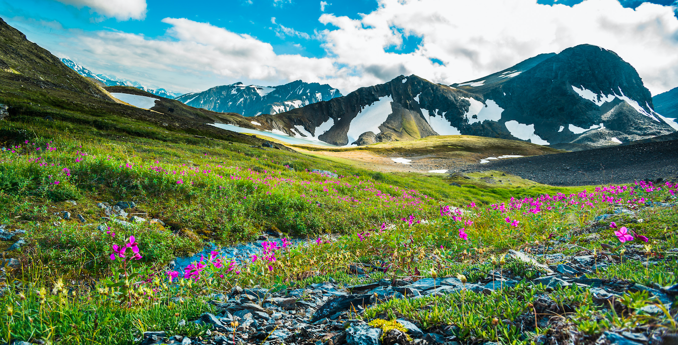How is the summer solstice celebrated in Alaska?